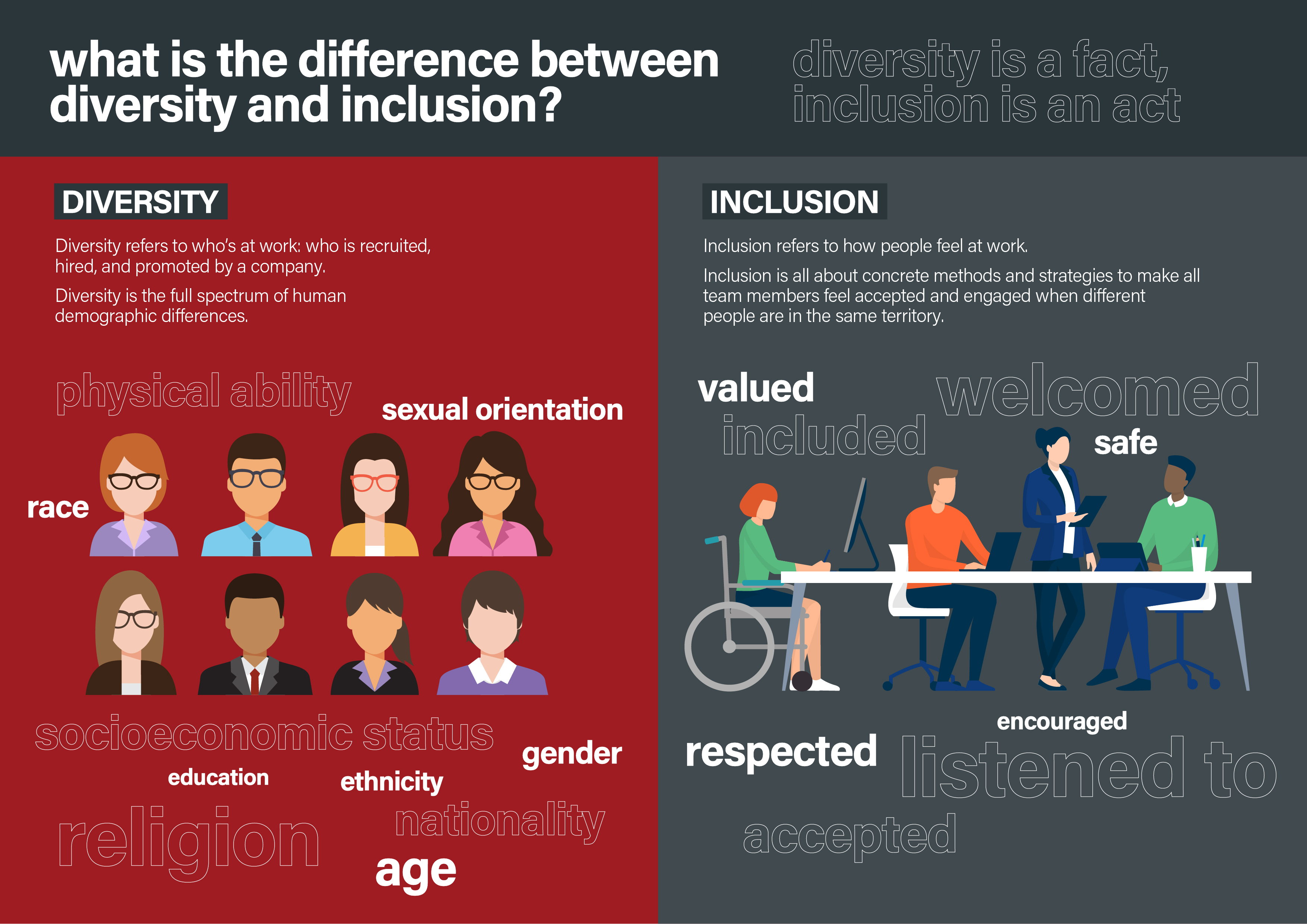 difference between diversity and inclusion infographic-02